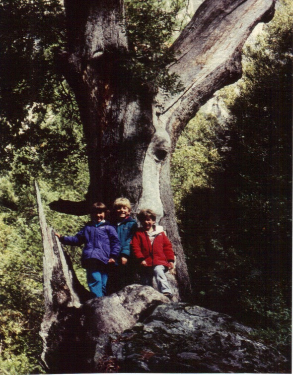 Yosemite 1994 - Kids on a rock