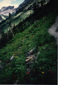 Highline Trail along the Garden Wall, Glacier National Park