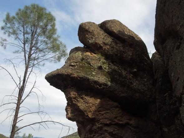 Pinnacles - weird rocks