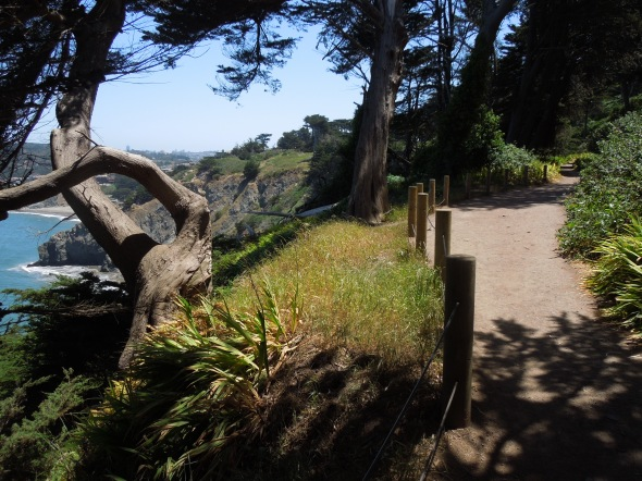 Coastal Trail, Golden Gate National Recreation Area