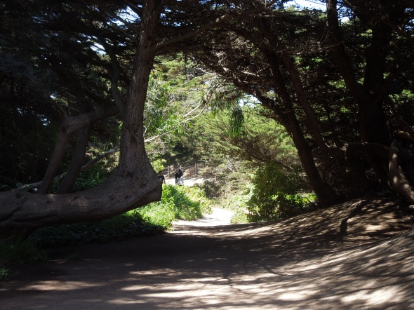 Lands End - trail west