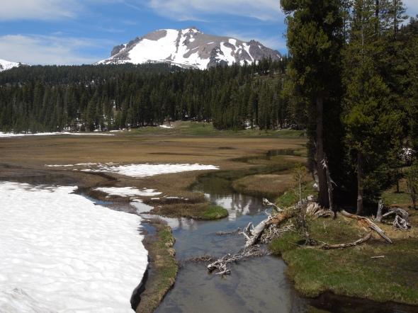 Kings Creek Meadow