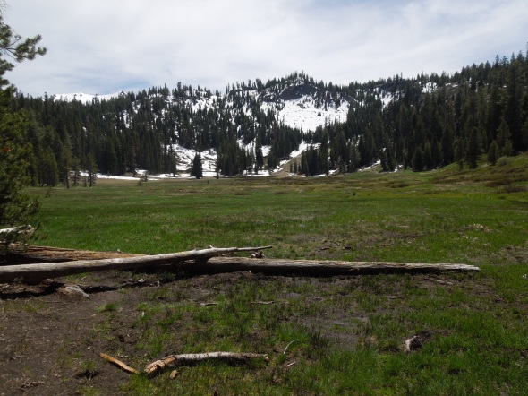 Paradise Meadow, Lassen Volcanic National Park
