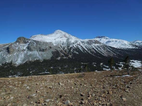 Mount Dana and Mount Gibbs