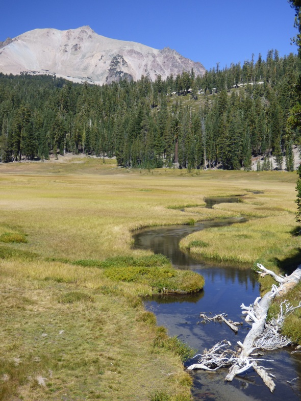 Kings Creek Meadow and Lassen Peak